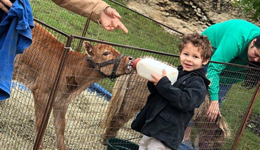 Kid With Cow